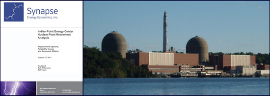 Indian Point Synapse report